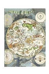 Celestial Planisphere - Midi Blanda Flexi -  Paperblanks - Paperblanks