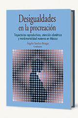 Desigualdades en la procreación - Ángeles Sánchez Bringas - Itaca