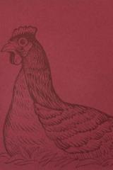 Las gallinas no tienen remedio - Luis Palacios Kaim - Impronta Casa Editora