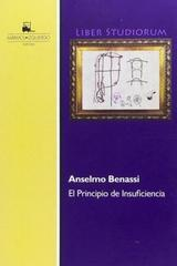El principio de insuficiencia - Anselmo Benassi - Marmol izquierdo
